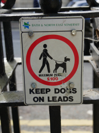 Dogs on leads please in Queens Square
